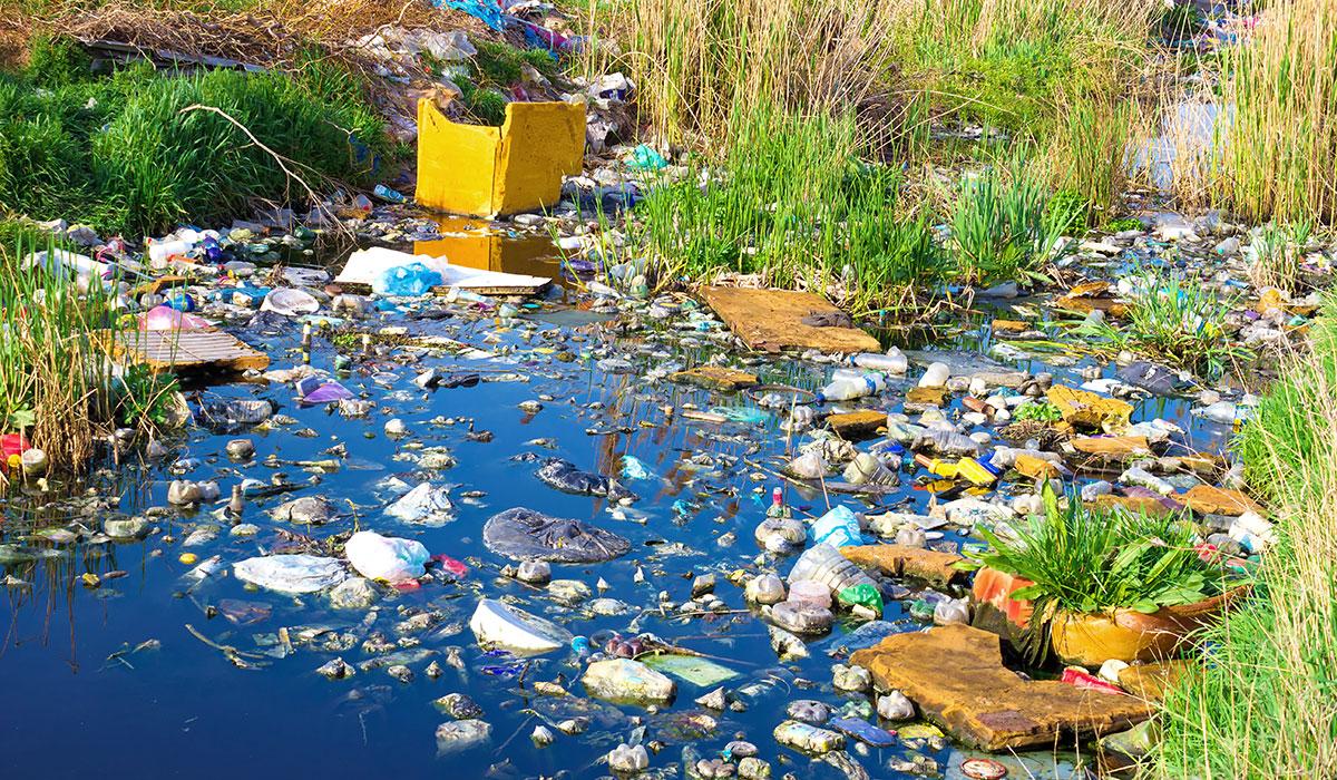 Umweltgifte (AdobeStock_63577475)